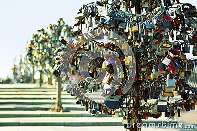 Wedding locks