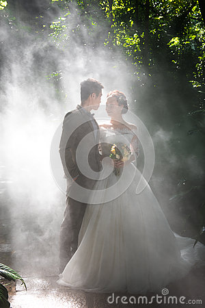 Free Wedding Photos In The Rainforest Royalty Free Stock Image - 62251776