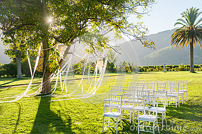 Wedding reception in a beautiful park