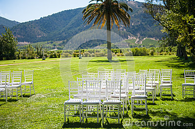 Wedding reception in nature
