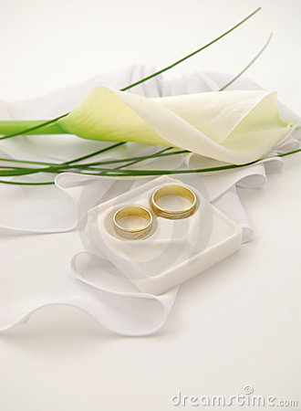 Free Wedding Ring Royalty Free Stock Image - 4820486
