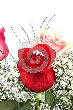 Wedding ring in rose