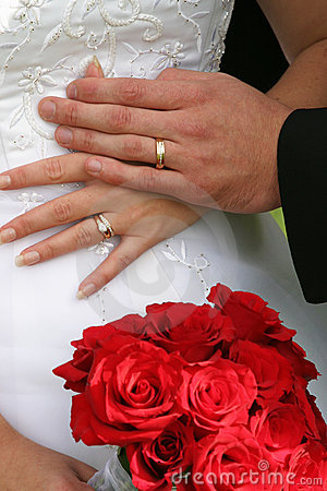 Free Wedding Rings Stock Photos - 248683