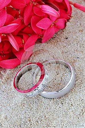 Free Wedding Rings Royalty Free Stock Photo - 4820175