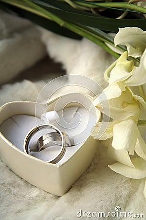 Free Wedding Rings Royalty Free Stock Photos - 605808