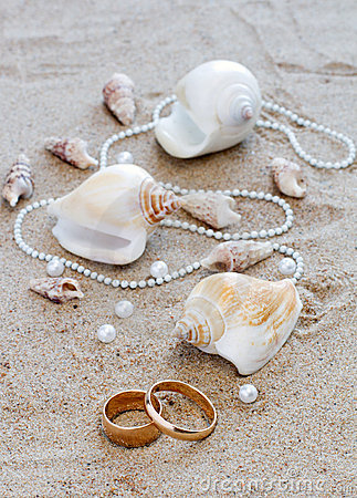 Free Wedding Rings And Cockleshells On Sand Stock Image - 23189621