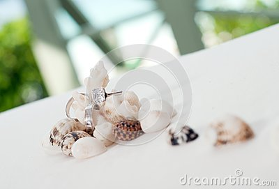 Wedding rings on coral in front of the seaside