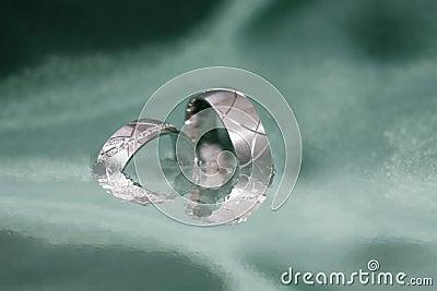 Wedding rings greyscale background
