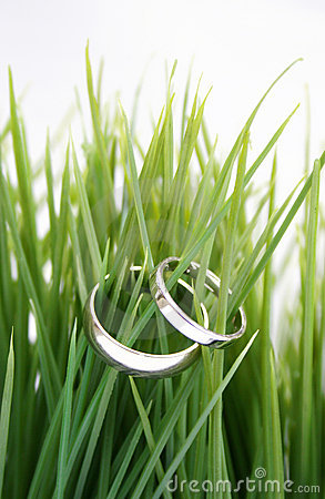 Free Wedding Rings In The Grass Royalty Free Stock Photos - 2446988