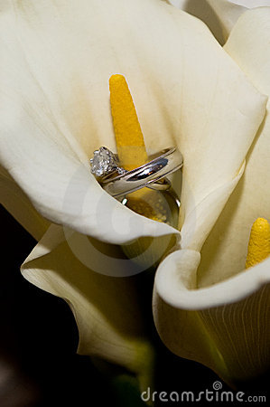 Wedding rings inside a calla lily
