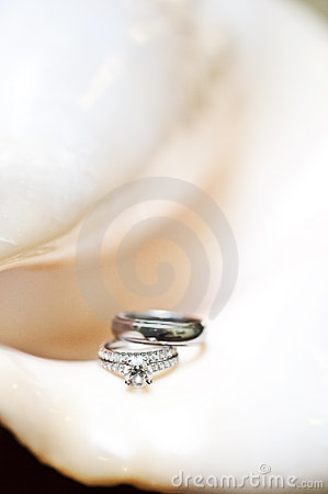 Free Wedding Rings On Shell Royalty Free Stock Images - 17690329