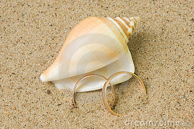 Wedding rings romantic card