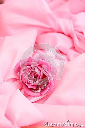 Wedding rings in rose
