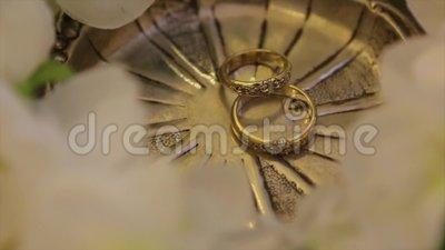 Wedding Rings And Rose Jewelry And Rings Stock Footage Video Of