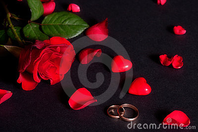 Wedding rings and rose petals