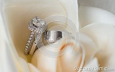 Wedding rings in white flower