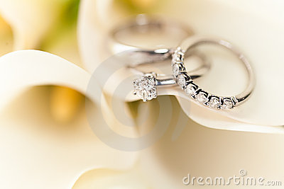 Wedding Rings on White Flowers