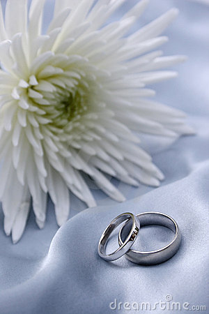 Free Wedding Rings - White Gold Royalty Free Stock Photo - 2447065