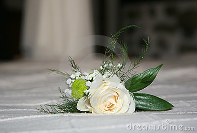 Wedding Rose Royalty Free Stock Image - Image: 21474616