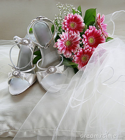 Free Wedding Shoes Stock Photography - 3039252