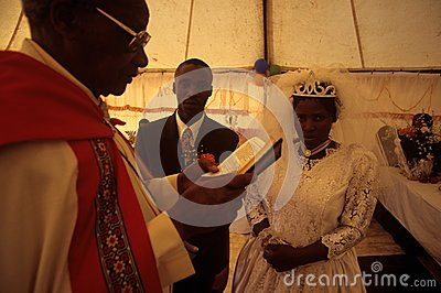 A wedding in South Africa. Editorial Image