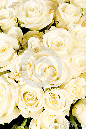 Wedding White Rose bouquet