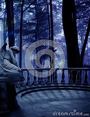 Weeping Angel Woods