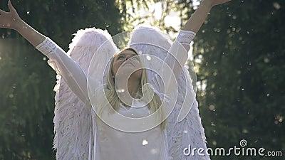 Weißer Engel stock video