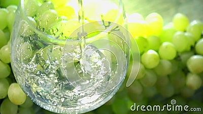 Weißwein, das in ein Glas gegen Bündel grüne Trauben studiert wird Weinproduktionskonzept Superzeitlupeabschluß herauf Video stock footage