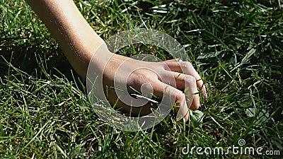 Weibliche Hand auf grünem Gras, Liebe zur Natur, Umweltschutz, Botanik stock video