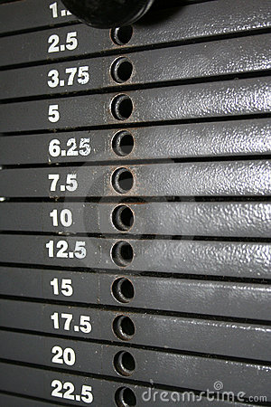 Weight Stack Scale