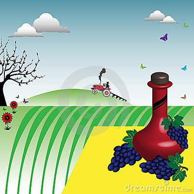 Wein und Trauben nähern sich einem Weinberg