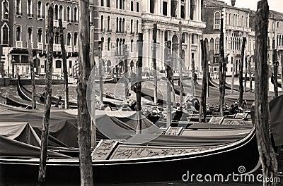 Weinlese Venedig 4