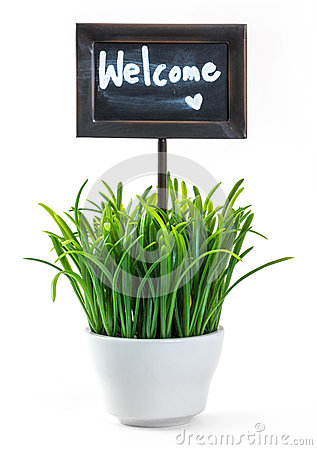 Free Welcome Sign And Grass In Ceramic Pot Royalty Free Stock Photography - 32277997