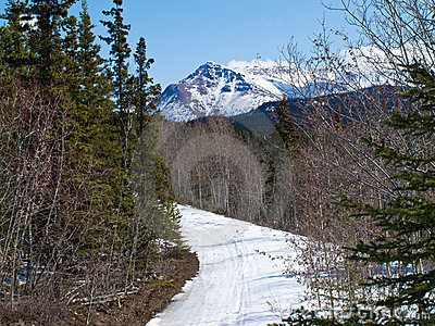 Well used winter trail in Yukon mountains, Canada
