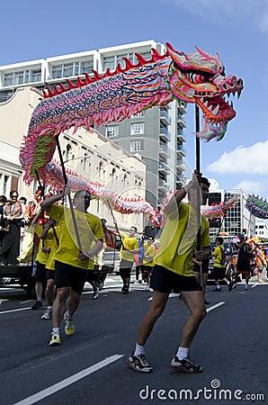 Free Wellington Chinese New Year Snake Royalty Free Stock Image - 29424696