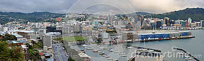 Wellington City Panorama in early Morning, New Zealand