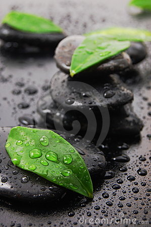 Free Wellness Concept With Zen Stone Royalty Free Stock Photos - 9218018