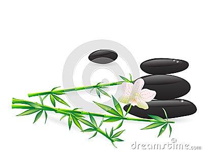 Wellness stones