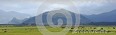 Welsh Wales landscape