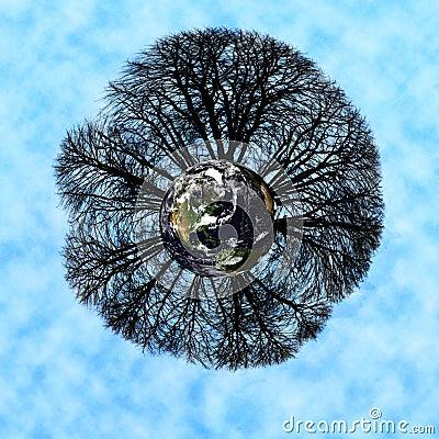 Weltbäume