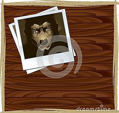 Werewolf Polaroid