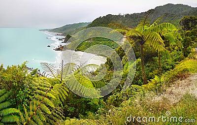 West Coast, South Island, Landscape, New Zealand