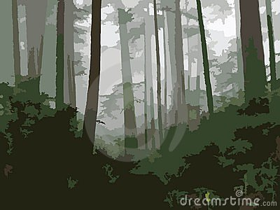 West Coast Woods