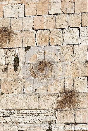 The westen wall