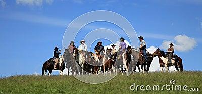 Western race horse - cowboy Editorial Image