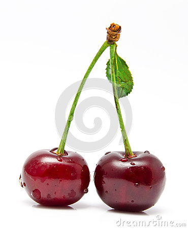Wet cherry  on a white