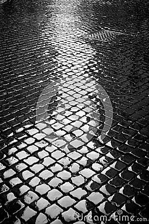 Free Wet Cobblestone Royalty Free Stock Image - 9869266