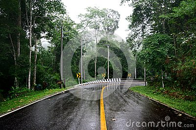 Wet curve road