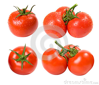 Wet and dry tomatoes set